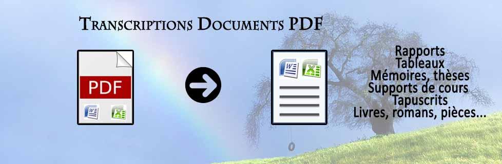 Transcription de documents PDF : Rapports, tableaux, mémoires, thèses, supports de cours, tapuscrits, romans, organigrammes, arbres généalogiques...